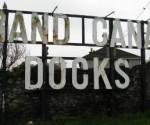 Grand Canal Docks